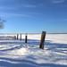 Fence at Grand Pre, Nova Scotia - HDR