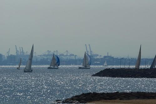 Saturday sails, Melbourne | by Joe Lewit