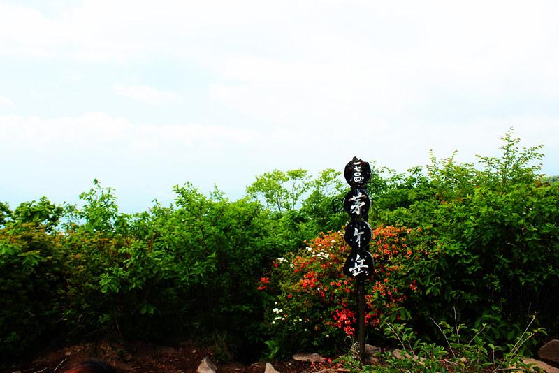 茅ヶ岳_22