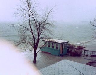 a hurricane in Dandy