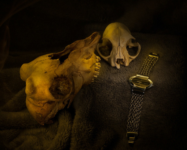 Death & Time