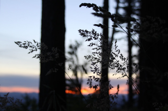 Bald Peak, Oregon US
