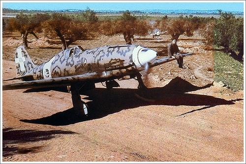 "Macchi C.202 Folgore (""thunderbolt"")"