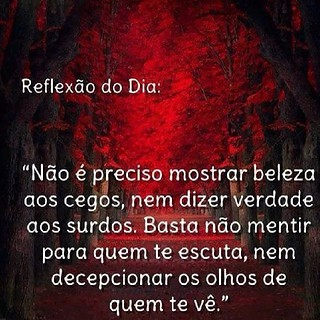 Gnigth Frases Reflexão Pedro Felipe Pires Pereira Flickr
