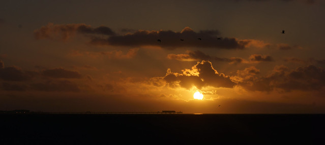 Southport Pier, Sunset and Pink-footed Geese - December 2014