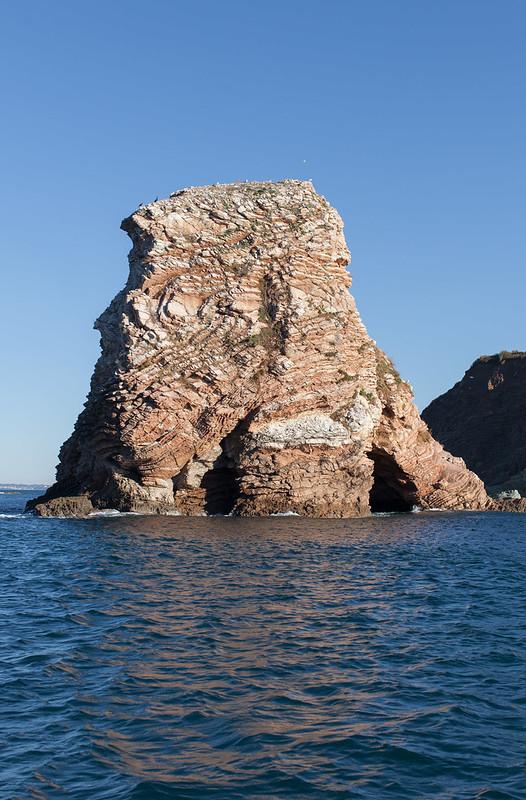 https://www.twin-loc.fr Bout de falaise dans la mer - Oiseaux - Picture Image Photo Photography