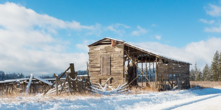 Needs TLC | by Ed Suominen