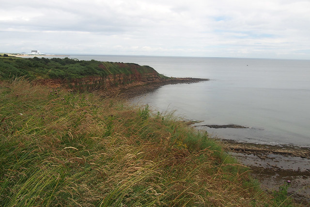 The coast at Cove near Cockburnspath