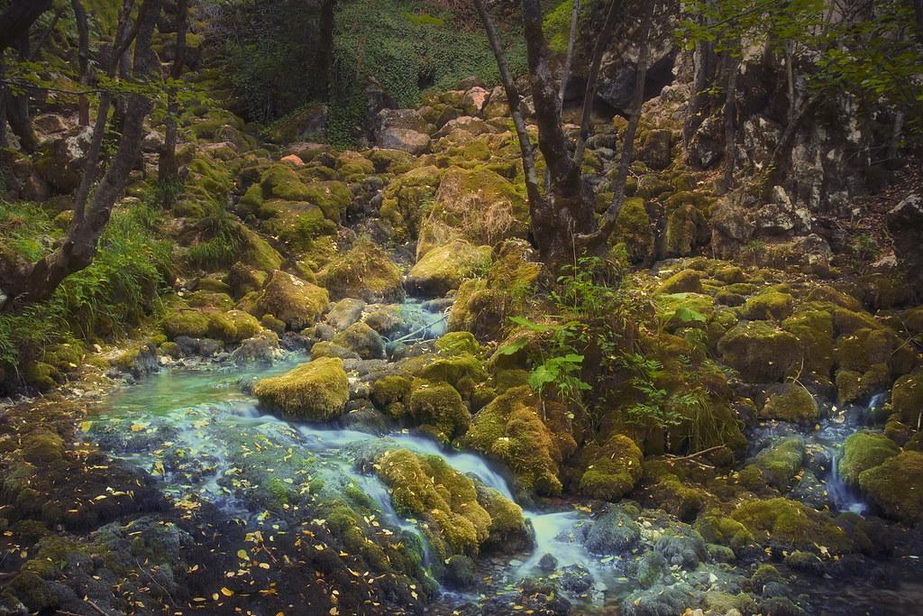 River Grza