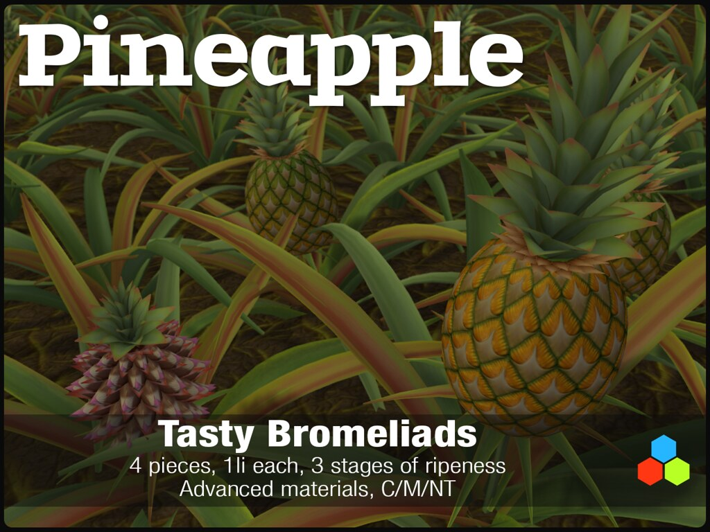 Pineapple Plants Available Exclusively At April Fameshed M Flickr