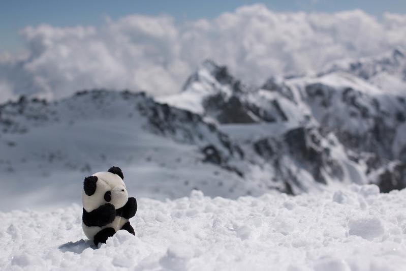 木曽駒ヶ岳とパンダ
