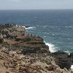 Rocky shore, Maui
