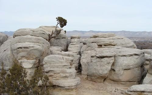 White Rocks | by iagoarchangel