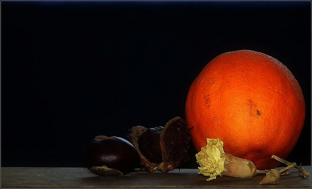 Still life with carnation, chestnut and orange...(II)