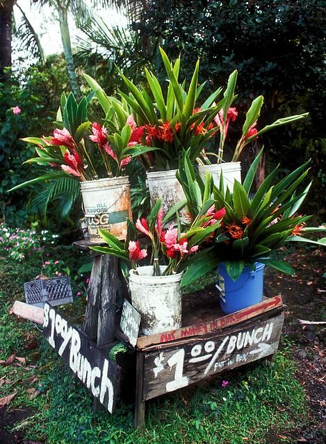 Hana Road Flower Stand