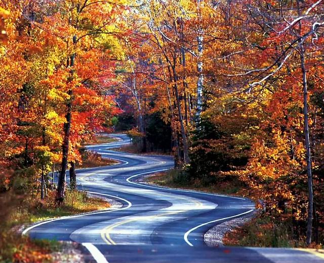 autumn twister