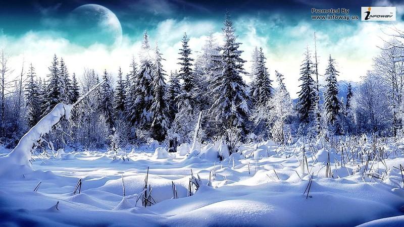 Snow Amazing HD