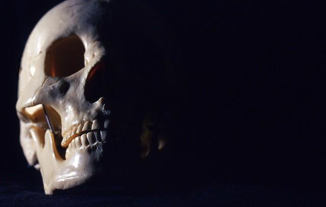 Day 296/365 - Skull