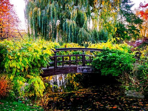 Bridge to the Japanese Garden   by garryknight