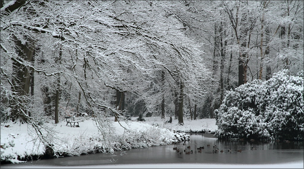 another snowpicture....