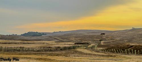Sunrise at Tolay Lake Regional Park