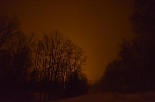 road trees winter light sky orange snow cold ice forest landscape woods glow neighborhood