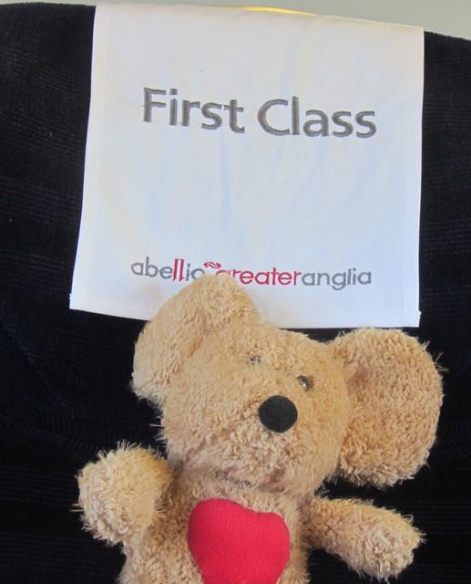 First class teddy