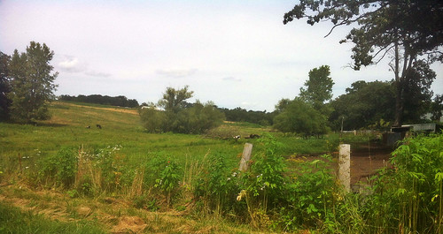 Site of the Farm of John Hill and Mary Ann Watson Hill | by Livingston-Watson