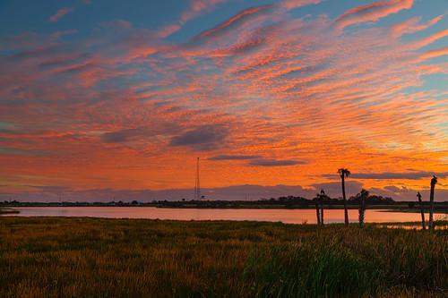 Viera Wetlands Sunrise 2 | by Photomatt28