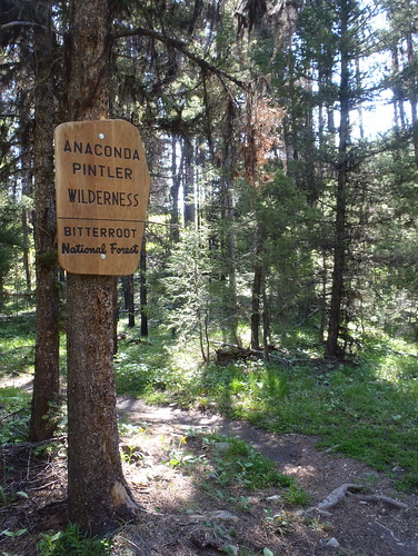 Anaconda-Pintler Wilderness | by MVWeth