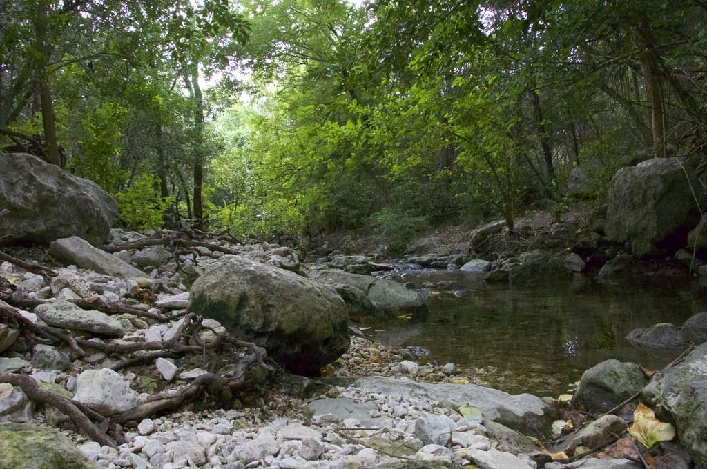 Image result for Bull Creek Park