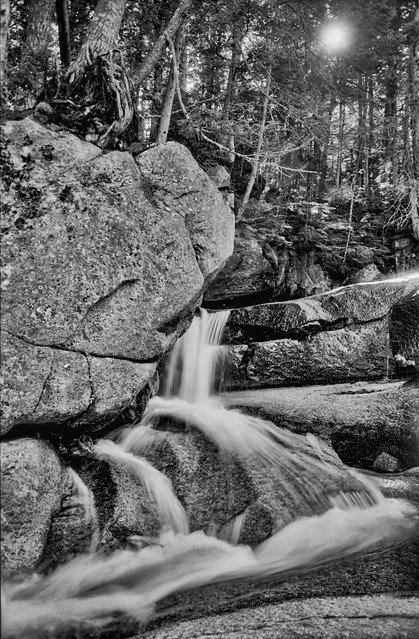 Rocks and Roots on the Pemigewasset