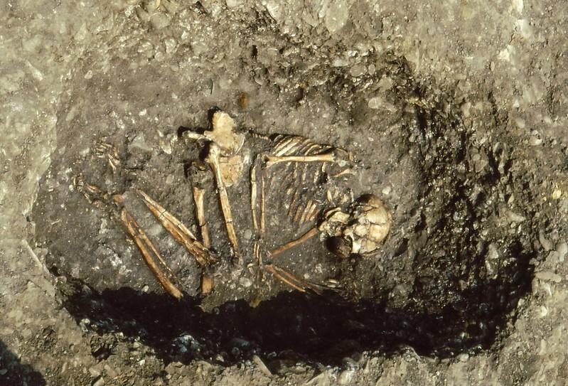 Collecchio 1992-0025