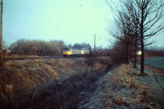 47366 Pinnox sdgs 26 Feb 1988