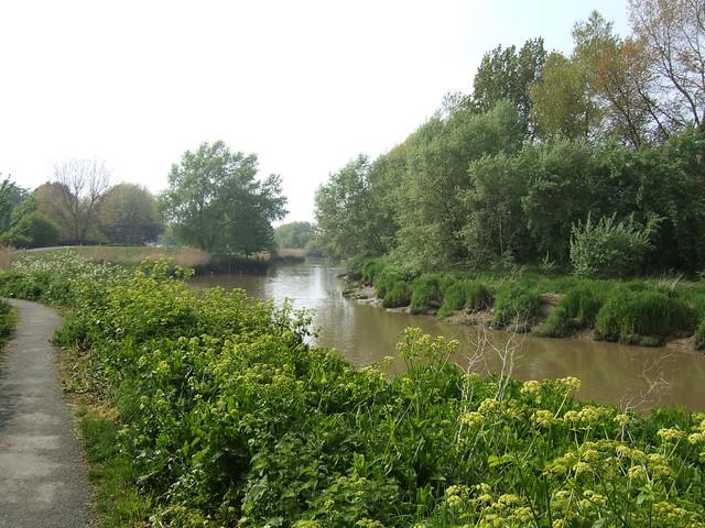 The River Stour near Sandwich