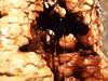 V podzemí Vřídla, foto: Petr Nejedlý
