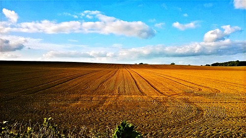 line season field lumia nokia explore autumn new lines september day cloud ngc landscape landscapes clouds amazing beautifulscenery beauty beautiful vanishingpoint countryside countryliving countrylife fields farmland farming dividing nature photography agriculture sky ireland valley orange light shadow image peace