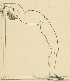 """Image from page 132 of """"Physical culture: first book of exercises in drill, calisthenics, and gymnastics"""" (1891) 