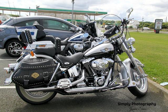 IMG_2742EN Harley