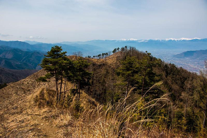 20150412-甲州高尾山-0367.jpg