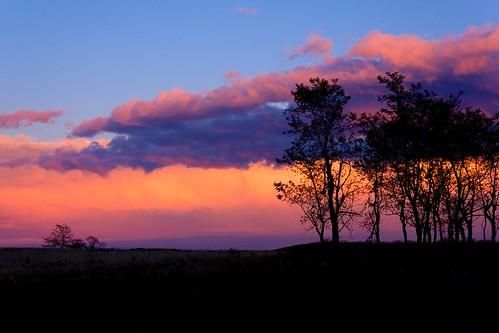 sunset cloud tree virginia meadows shenandoahnationalpark sonynex