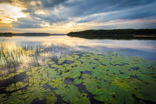 ireland sunset lake dring longford loughgowna