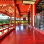 Daikakuji temple - 大覚寺
