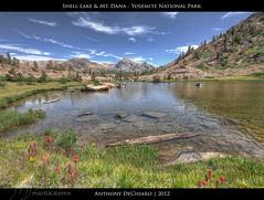 Shell Lake & Mount Dana