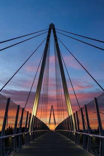 california bridge sunset best flickrs flickrsbest