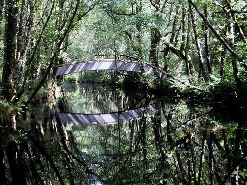 spain hiking galicia woodenbridge senderismo pontevedra lerez riparianforest forcarei puentedemadera riolerez bosquederibera teresalaloba rutadaspontesdolerez fishingtrail senderodepescadores senderofluvial prg113 riolerez003 duasigrexas