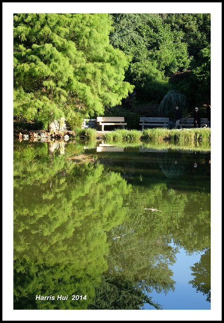 What Is Reflection Meaning To You? - Minoru Park XT1239e