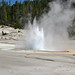 Constant Geyser (Porcelain Basin, Norris Geyser Basin, Yellowstone Hotspot Volcano, nw Wyoming, USA)