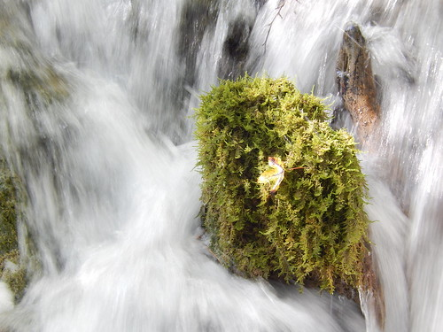Plitvice Lakes - 10