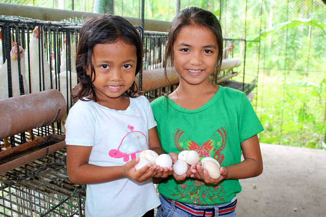 Philippines fishery and hen house improvements to yield more nutrition, funding for children's outreach